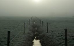Sloot in de mist