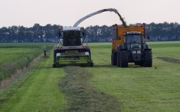 Gras oogsten Fendt-Veenhuis-Claas